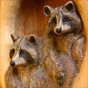 Raccoon woodcarving by MK Carving Canada