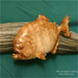 Piranha wood carving