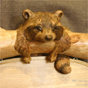 Raccoon sign woodcarving