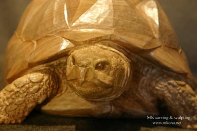 Tortoise woodcarving 4